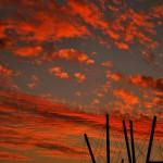 Fotografia, Galeria Moa, diseño, arte, decoracion, cuadro, Cesar Uribe, atardecer, australia, Brisbane, Kurilpa, nubes, rojas