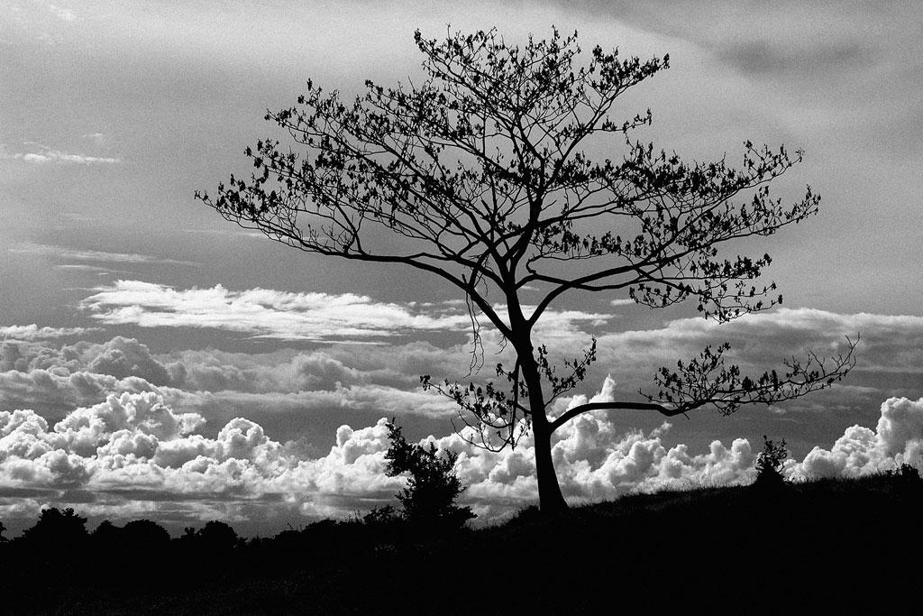 Hermosas imagenes en blanco y negro page 53 notiforo for Imagenes bonitas en blanco y negro
