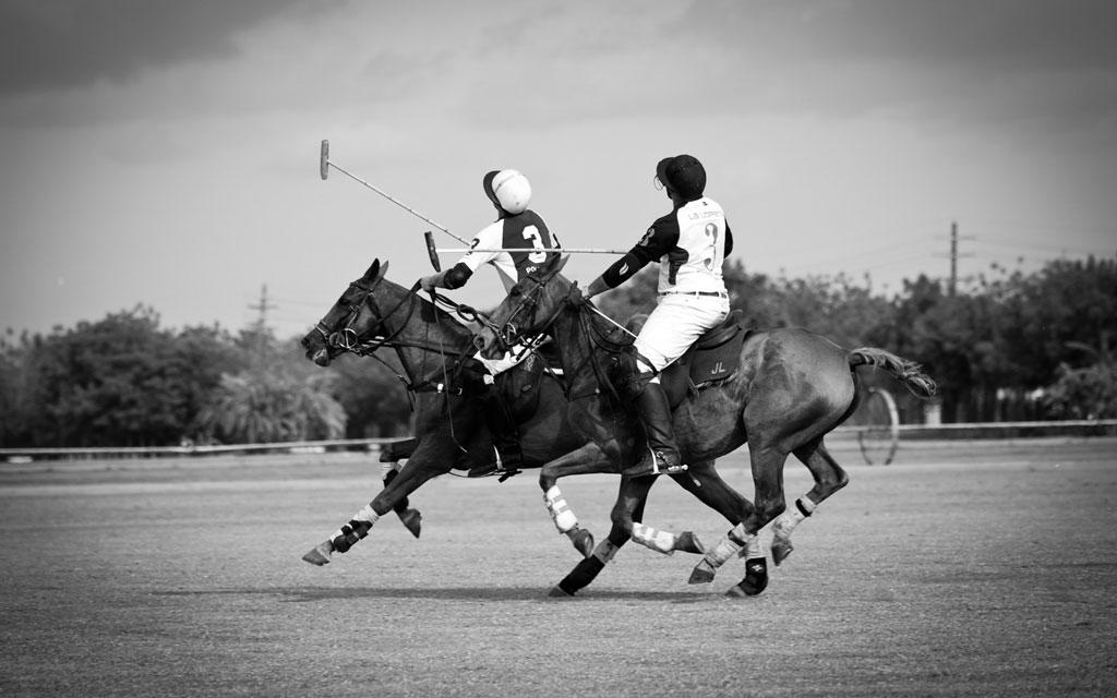 galeria moa, fotografia, diseño, arte, decoración, cuadro, Paola Campo Soto, polo, caballos, deporte, blanco y negro,