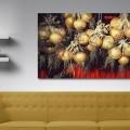 Galeria moa, fotografia, arte, diseño, decoración, cuadros, Santiago Martinez, Cebolla, campo, siembra, alimento, Magome, Japon