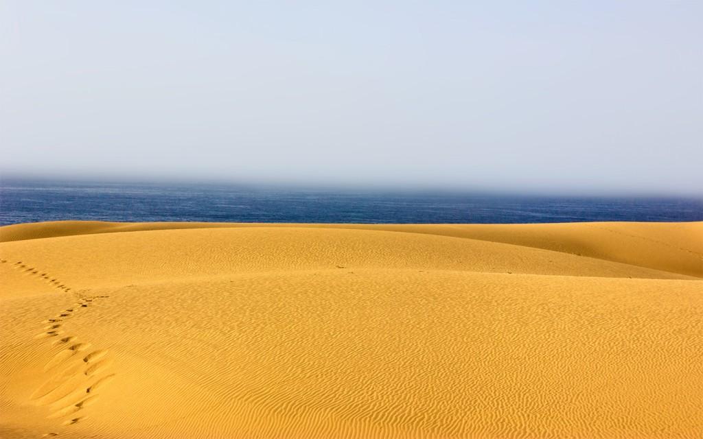 Santiago Martinez - Desierto y mar (Baja)