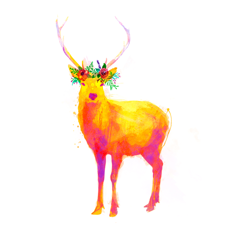 Venado, Galeria MOA, ilustraciones, animal, arte