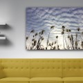 Paisaje, nubes, Natalia Pfeifer, Galeria MOA, fotografía, arte, decoración, Japon, ambiente, sala