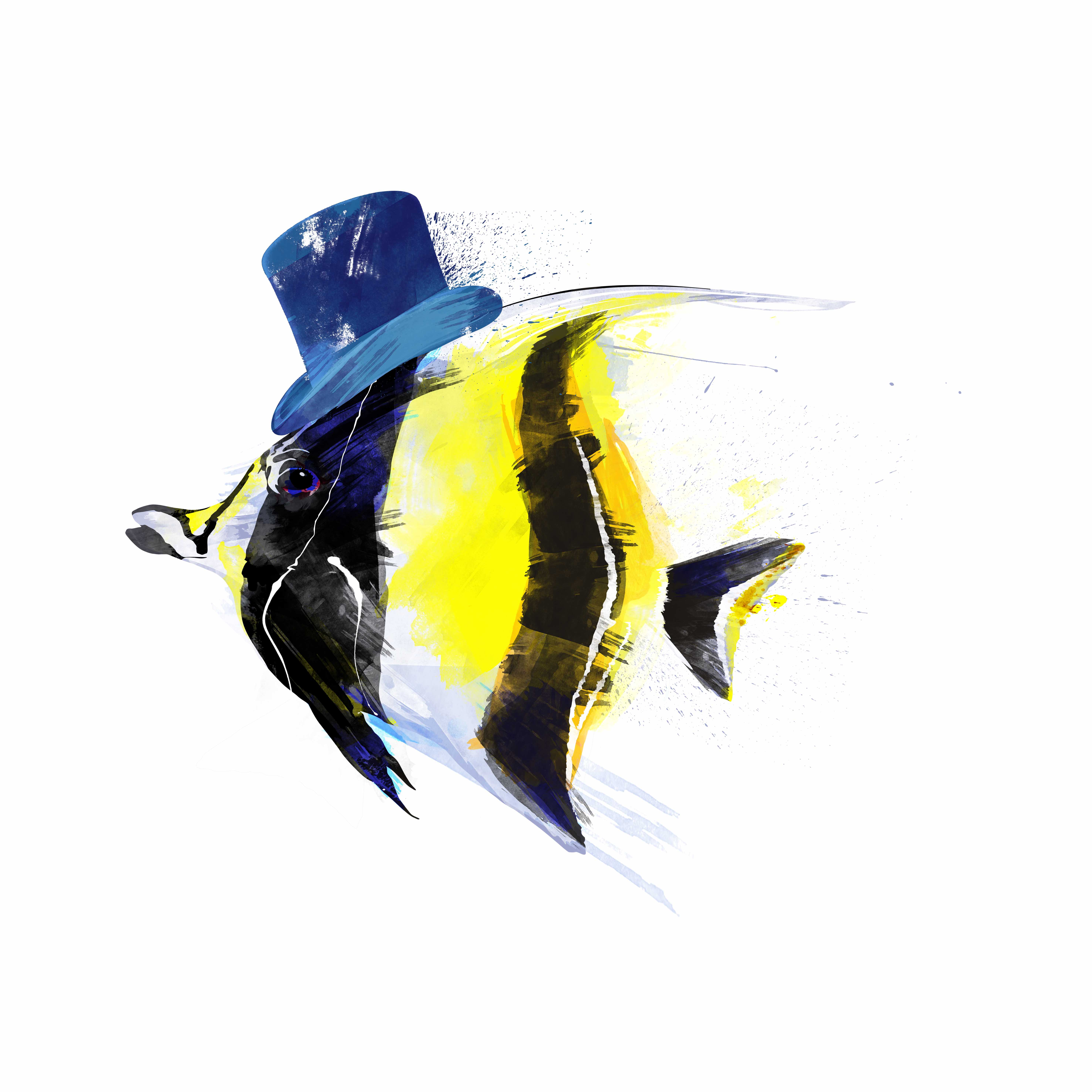 Ilustración, pez, Galeria MOA, arte, decoración, cuadro, mar, animales, MOA Prints,