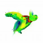 Ilustración, tortuga, Galeria MOA, arte, decoración, cuadro, mar, animales, MOA Prints,