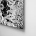 Camila Bruce, fotografia, galeria MOA, arte, diseño, decoracion, pelo, piel, acrilico, plexiglas
