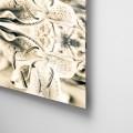 Camila Bruce, fotografia, galeria MOA, arte, diseño, decoracion, flor, acrílico, plexiglas