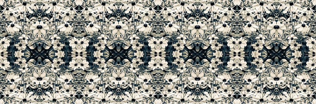 Camila Bruce, fotografia, galeria MOA, arte, diseño, decoracion, flores, collage